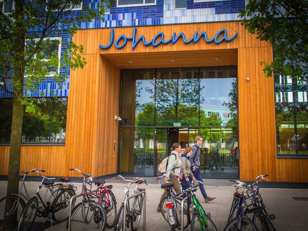 Homepage - Living in Johanna